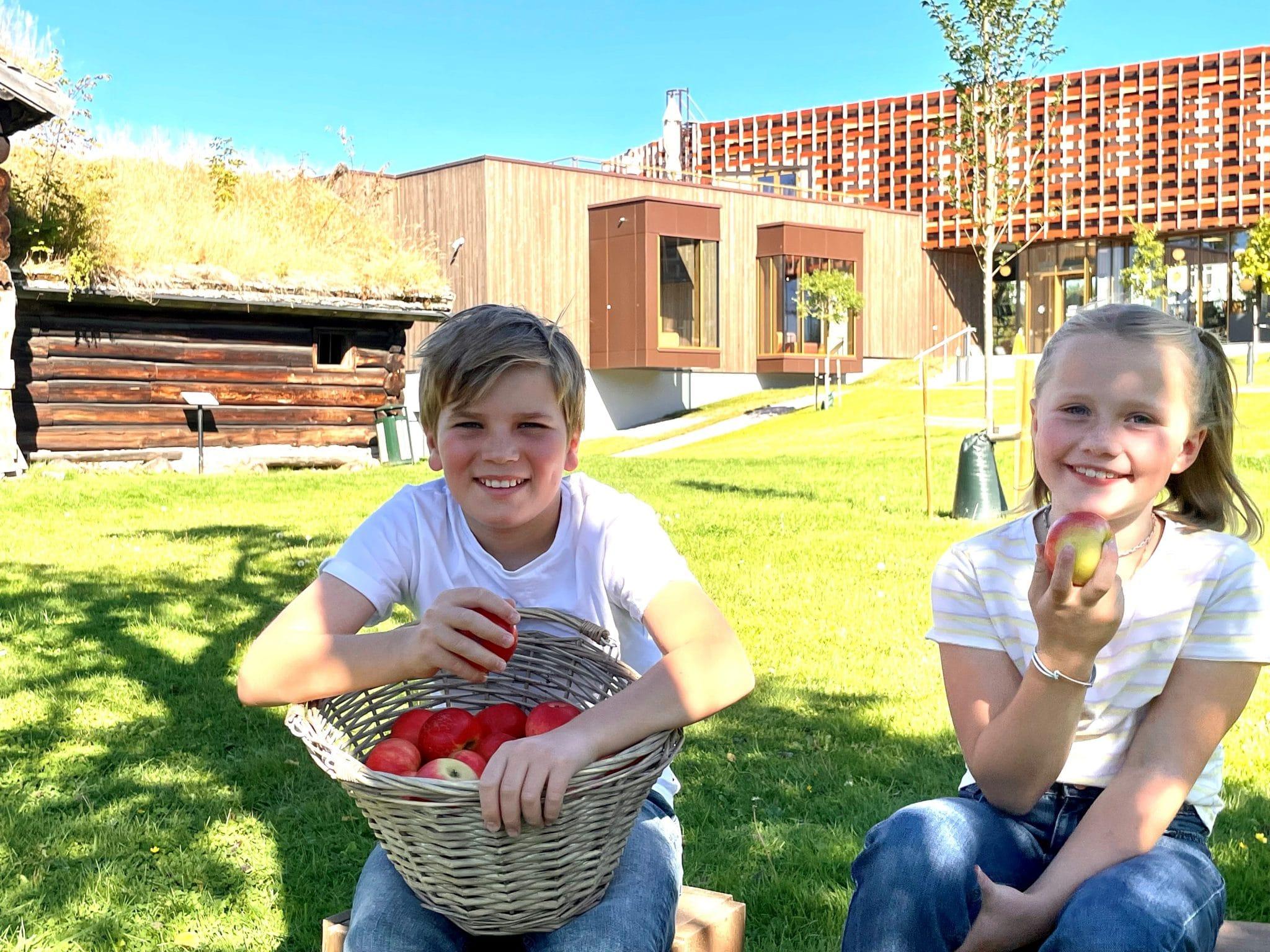 Barneaktivitet: Epletrykk i Brekkeparken 18. og 19. september